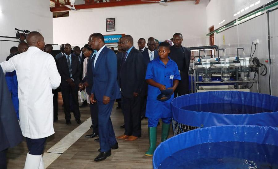 Le Président de la République SEM Faure GNASSINGBE en visite à l'écloserie de l'IFAD Aquaculture Elavagnon