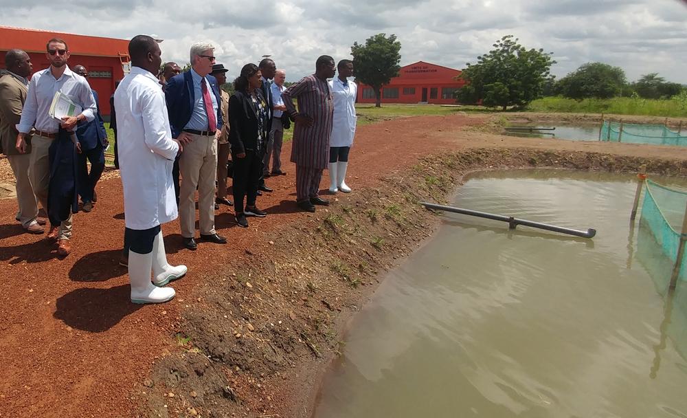 Revue de presse : Visite du Gouverneur Philip Bryant à l'IFAD Elavagnon