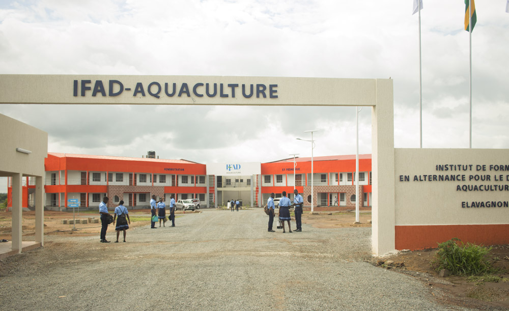 Rentrée des classes à l'IFAD-Aquaculture d'Elavagnon